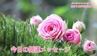 『今日の開運メッセージ』エンジェルカード&誕生数占い3/20
