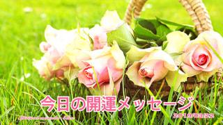『今日の開運メッセージ』エンジェルカード&誕生数占い3/22