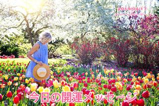 今日の開運メッセージ4/17(オラクルカード&誕生数占い)