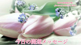 今日の開運メッセージ5/15(オラクルカード&誕生数占い)