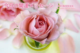 『今日の開運のメッセージ』エンジェルカード&誕生数占い9/23