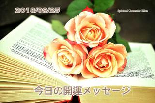『今日の開運のメッセージ』エンジェルカード&誕生数占い9/25